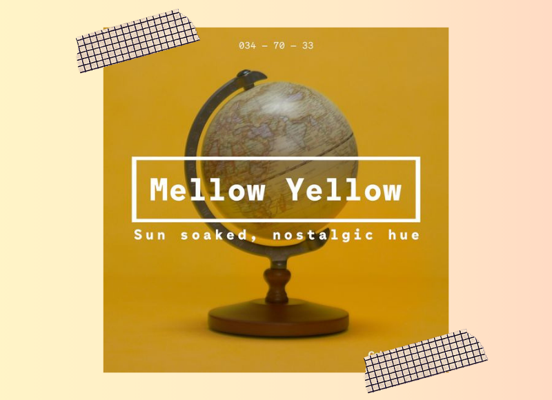 As cores para 2020 - Mellow Yellow - Cantaloupe - Cassis - Purist Blue - Neo Mint