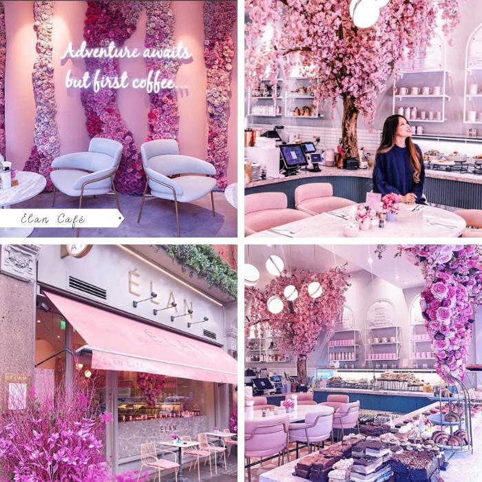 Cafés em Londres para conhecer, tirar foto, flores, rosa, roteiro